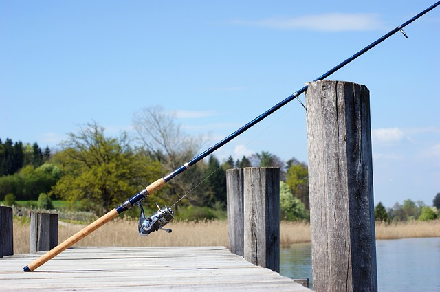 The Fundamentals of Choosing Your Fishing Rods and Reels