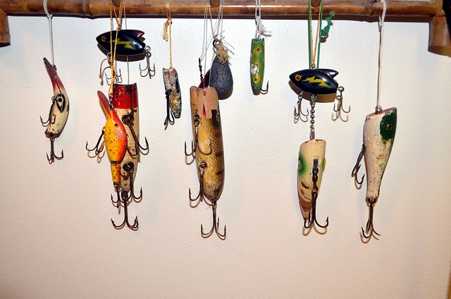 Types of Fishing Baits and Lures
